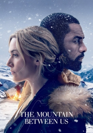 The Mountain Between Us Image